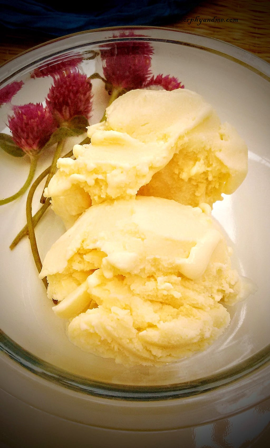 2 Ingredient Malai Ice cream